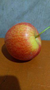 Яблоко зимнего сорта